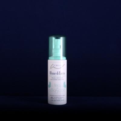 Deodorant scent of woods  (100 ml)